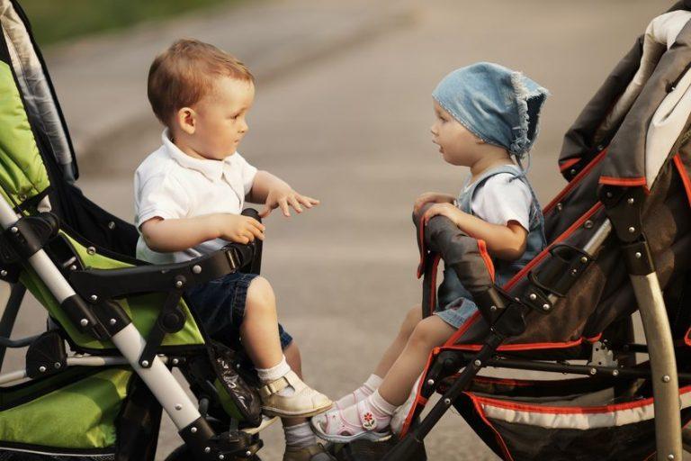 Due bambini nel passeggino