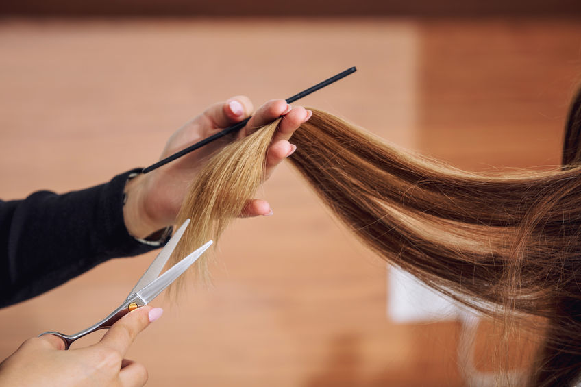 Young beautiful woman client makes a haircut from a professional hairdresser in a beauty salon close-up