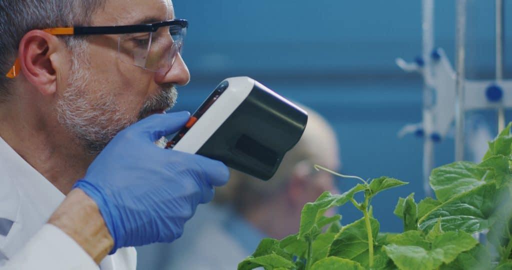 Na foto um homem dentro de um laboratório apontando um termômetro a laser para algumas plantas.